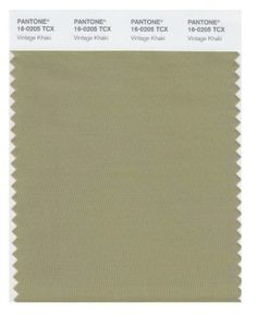 Pantone TCX Smart Color Swatch Card, Greige in House Paint. Shades Of Brown Paint, Dark Brown Color, Paint Swatches, Color Swatches, Labradorite, Green Name, Aw 2018, Wall Treatments, Season Colors