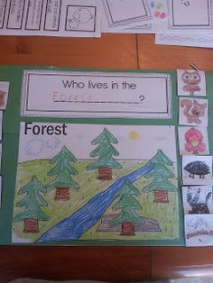 The Crazy Pre-K Classroom: Animal and habitat teaching ideas for pre-k and a freebie!