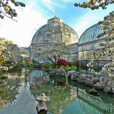 They don't call Belle Isle park #Detroit's jewel for nothing, ~ beautiful shot of the Anna Scripps Whitcomb Conservatory!