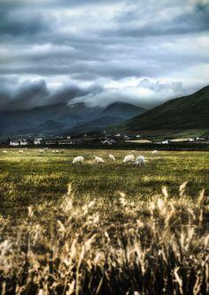 Using photoshop to edit landscape images