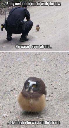 30 Funniest Memes #Funny #Memes