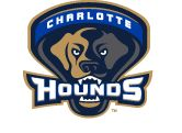 Charlotte Hounds--NC's newest (and only) professional lacrosse team.