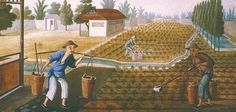 qing dynasty agricultural society - a painting of peasant workers planting rice