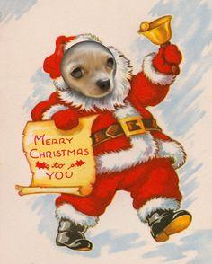 A Chihuahua's Christmas greeting, via Etsy.