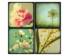 Garden Flowers Collection Botanical Print by EyePoetryPhotography