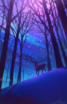 Rentier-Wald-Nacht-Sterne-Digital-Art-iPhone-Wallpaper - My list of the most beautiful artworks Beautiful Nature Wallpaper, Beautiful Landscapes, Colorful Wallpaper, Cute Wallpapers, Wallpaper Backgrounds, Iphone Wallpapers, Wallpaper Samsung, Wallpaper Art Iphone, Cool Anime Backgrounds