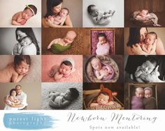 Newborn Mentoring | Newborn Workshop | Newborn Photography | Purest Light Photography