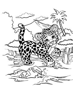 Download Or Print This Amazing Coloring Page Leopard Jungle