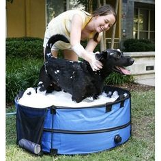 portable, collapsible pet bath tub