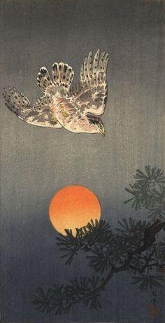 Goshawk, by Tsuchiya Koitsu, 1930's