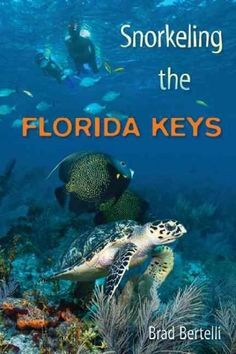 Focuses on 14 segments of the Florida Reef, featuring historically significant wrecks, lighthouses, state parks, etc. Provides GPS coordinates and practical travel hints.