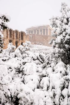 Snow in Athens Parthenon, Greece Parthenon Greece, Athens, Snow, Seasons, Explore, Greek Islands, Greece, Pictures, Seasons Of The Year