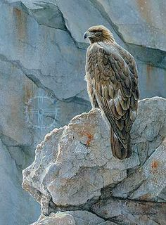 Ancient Guardian-Golden Eagle ~ by Susan Bourdet ~ Wild Wings Wildlife Paintings, Wildlife Art, Eagle Art, Nature Artists, Golden Eagle, Wild Creatures, Wild Nature, Birds Of Prey, Native American Art