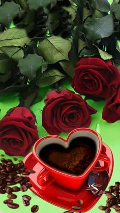 Good Morning Coffee, Good Morning Gif, Good Morning Flowers, Good Morning Images, Love Rose, Love Flowers, Beautiful Flowers, Coeur Gif, Reflection Pictures
