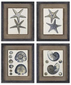 Coastal Blue Framed Art Set of 4