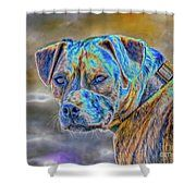 Bulldog  Shower Curtain by Bill And Deb Hayes