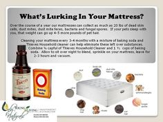 Mattress Cleaner using Thieves & Baking Soda ~ Young Living is a good place to order essential oils . Thieves Essential Oil, Essential Oils Cleaning, Essential Oil Uses, Young Living Thieves, Young Living Oils, Essential Oils For Babies, Young Living Essential Oils, Thieves Household Cleaner, Thieves Cleaner