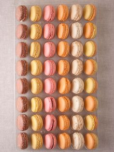 macarons: mango,white, chocolate, passion fruit, chocolate coconut, strawberry and apricot!!