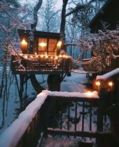 Winter wonderland ✨