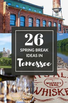 There are endless options for Spring break in Tennessee - I put together 26 of the best to help you decide where you should spend your spring break in beautiful Tennessee. Click through to read my Ultimate Spring Break Ideas for Tennessee. | Camels and Chocolate #springbreak #tennessee