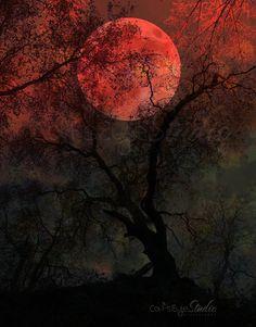 BLOOD MOON Surreal Full Moon Art Print by CatsEyeStudio on Etsy, $11.00