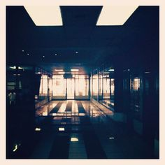 Backlight #35mm #lomo #filmneverdie #vintage