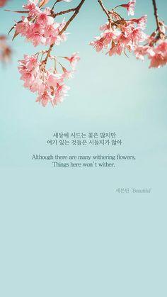 Beautiful - Seventeen (세븐틴) Wallpaper - (By Song Lyrics Wallpaper, Bts Wallpaper, Wallpaper Quotes, K Pop, Korean Phrases, Korean Words, K Quotes, Song Quotes, Seventeen Lyrics