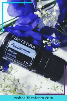 Let's talk about peppermint essential oil uses + what science says about how it soothes pain, ease headaches, clear sinuses and protects your dental health. Peppermint Essential Oil Uses, Doterra Peppermint, Congestion Relief, Chest Congestion, Essential Oil Blends, Essential Oils, Remedies For Menstrual Cramps, Cramp Remedies, How To Clear Sinuses