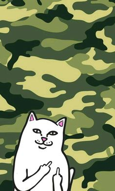 Ripndip iphone wallpaper #ripndip #middle #finger #cat #wallpaper #iphone #green #camouflage