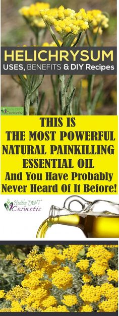 This is nature's most powerful painkilling essential oil – and you've probably never heard of it before!