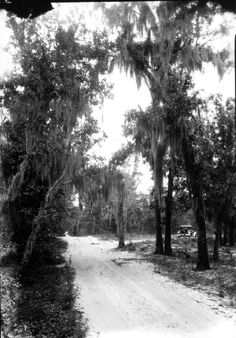 Car drives down a country road - Tallahassee, Florida