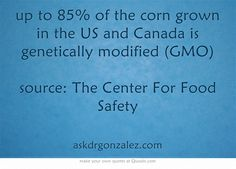 up to 85% of the corn grown in the US and Canada is genetically modified (GMO) source: The Center For Food Safety
