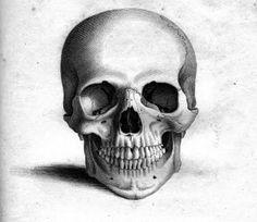 Skull - must do!