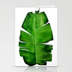 BANANA LEAF painting Stationery Cards @pointsalestore #society6threesecond #stationerycards #painting #digital #oil #watercolor #popart #abstract #streetart #vintage #banana #leaf #plant #floral #monstera #jungle #tropic #wild #nature #earthday #mothersday #monsteradeliciosa #exotic