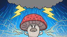 How Mushrooms Make It Rain  (MinuteEarth video, 1 min., 19 secs.)