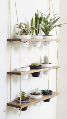 TriBeCa Trio Pot Shelf / Hanging Shelves / Planter Shelves / Floating Shelves / Three Tiered Shelf If you are looking for the showstopper of plant displays, look no further! Our hanging shelves joined forces with our planter stands and magic happene. Diy Hanging Shelves, Plant Shelves, Small Shelves, Shelf Display, Rope Shelves, Window Shelf For Plants, Locker Shelves, Outdoor Shelves, Garden Shelves