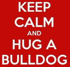 Keep calm and a hug a bulldog