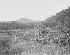 New Guinea World War II (16)