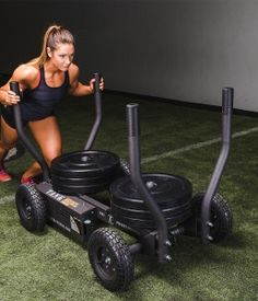 rogue dog sled  push/pull weight training  rogue fitness