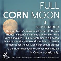 The Full Harvest Moon arrives September Learn the meaning behind one of the year's most popular full Moons. Full Moon Names, Next Full Moon, Harvest Moon, Harvest Time, Full Moon September, Hello September, Moon Stages, Corn Moon, Moon Date