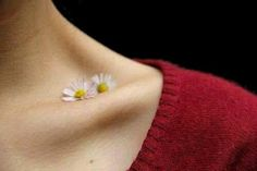 Beauty in clavicle
