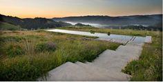Set in the grasslands of Lagunitas, CA, this 75-foot lap pool was designed by Australian-born, Northern California-based Bernard Trainor. Photo courtesy of Bernard Trainor and Associates.