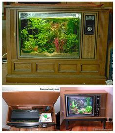 Upcycled Retro Television Aquarium | 8 Household Items Begging You To Turn Them Into Aquariums