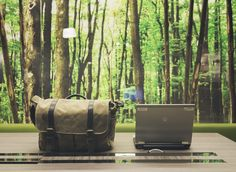 Greening Your Space Improves the Environment and Lessens Stress
