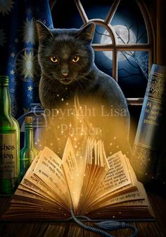 """""""BEWITCHED""""  by Lisa Parker"""