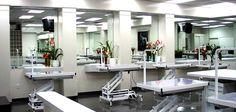 grooming salon ideas - Google Search