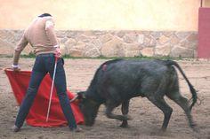 Talavante 'ensaya' en casa de Victorino - Mundotoro.com