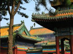 Eight Temples of Puning /Chengde China