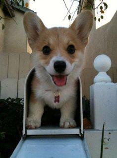 u got mail!