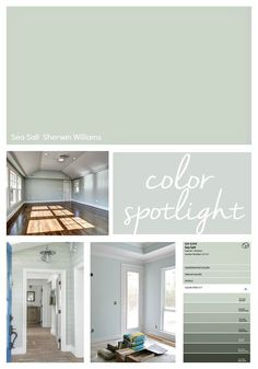Sherwin Williams Sea Salt: Color Spotlight - - Highlighting why Sherwin Williams Sea Salt is one of the most popular and best selling paint colors out there today. Check out our Sea Salt tips! Paint Colors For Home, Sea Salt Sherwin Williams, Green Paint Colors, Bedroom Paint, New Homes, Painting Bathroom, House Colors, Living Room Paint, Room Paint Colors
